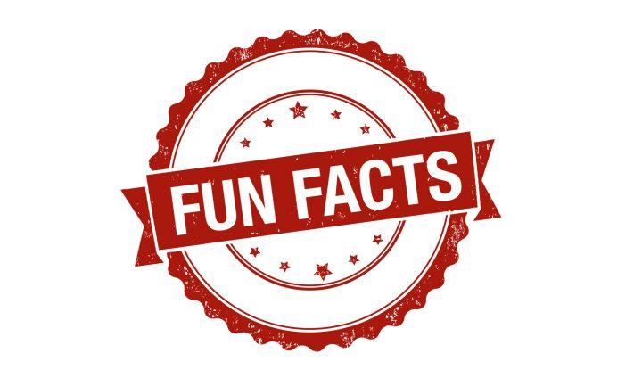 Fun Facts học từ vựng tiếng anh