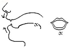 nguyên âm dài trong phát âm