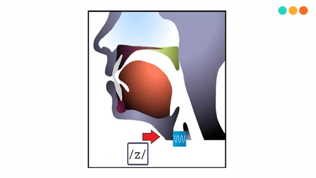 Cách phát âm s z iz